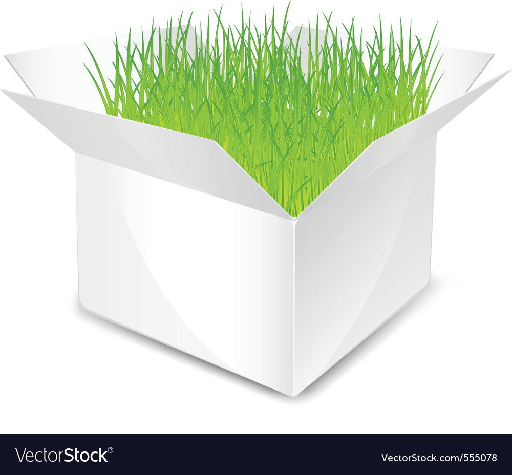 White box with green grass isolated vector | Price: 1 Credit (USD $1)