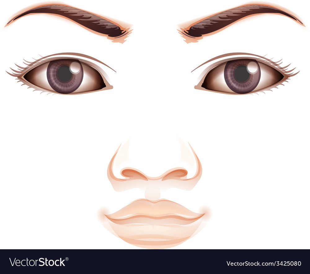 A facial expression vector | Price: 1 Credit (USD $1)
