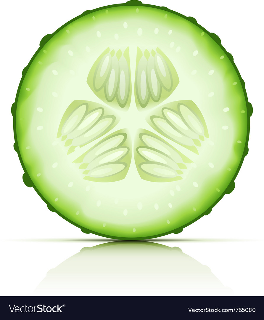 Ripe cucumber vector | Price: 1 Credit (USD $1)
