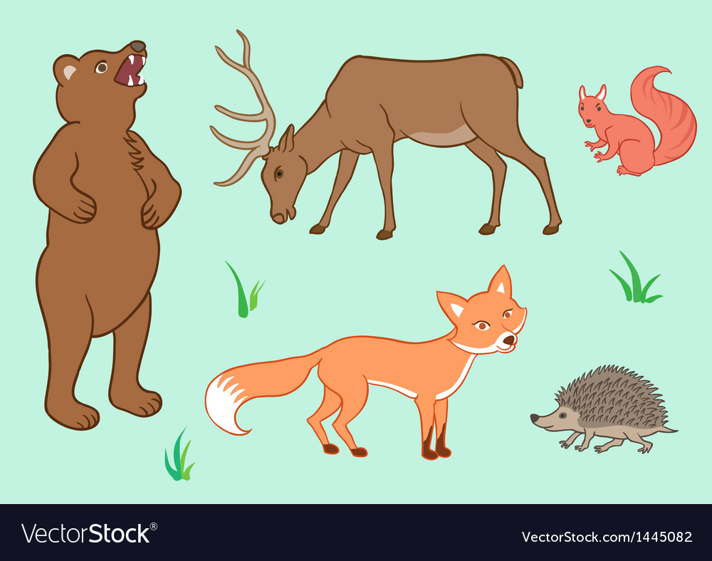 The forest animals vector | Price: 1 Credit (USD $1)