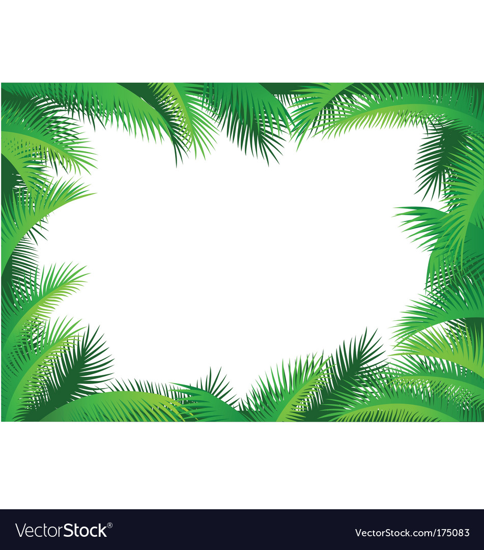 Palm leaf border vector | Price: 1 Credit (USD $1)