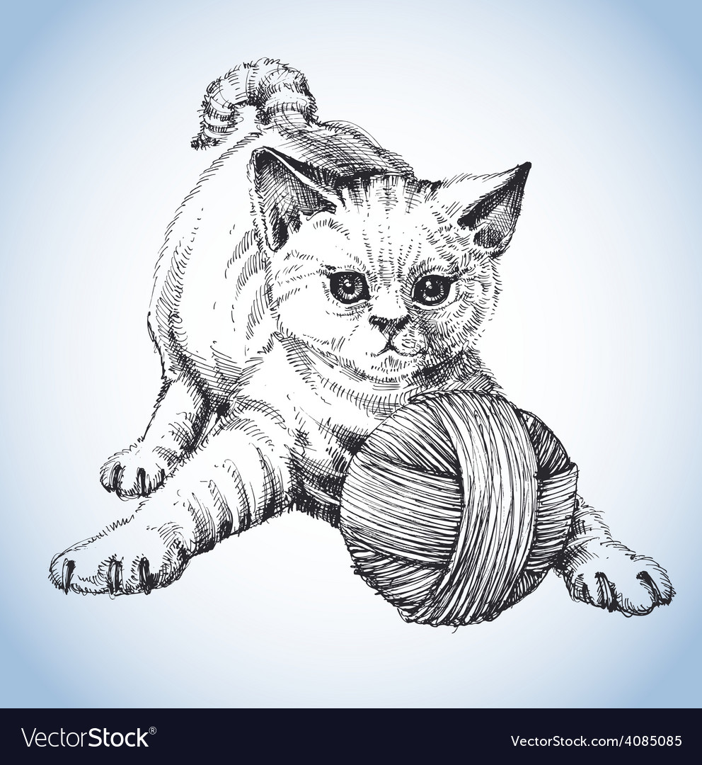 A cute cat playing with a ball of wool vector