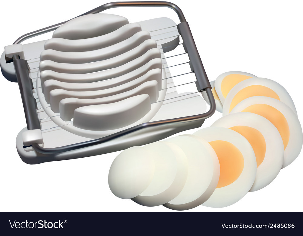 Egg slicer vector | Price: 3 Credit (USD $3)