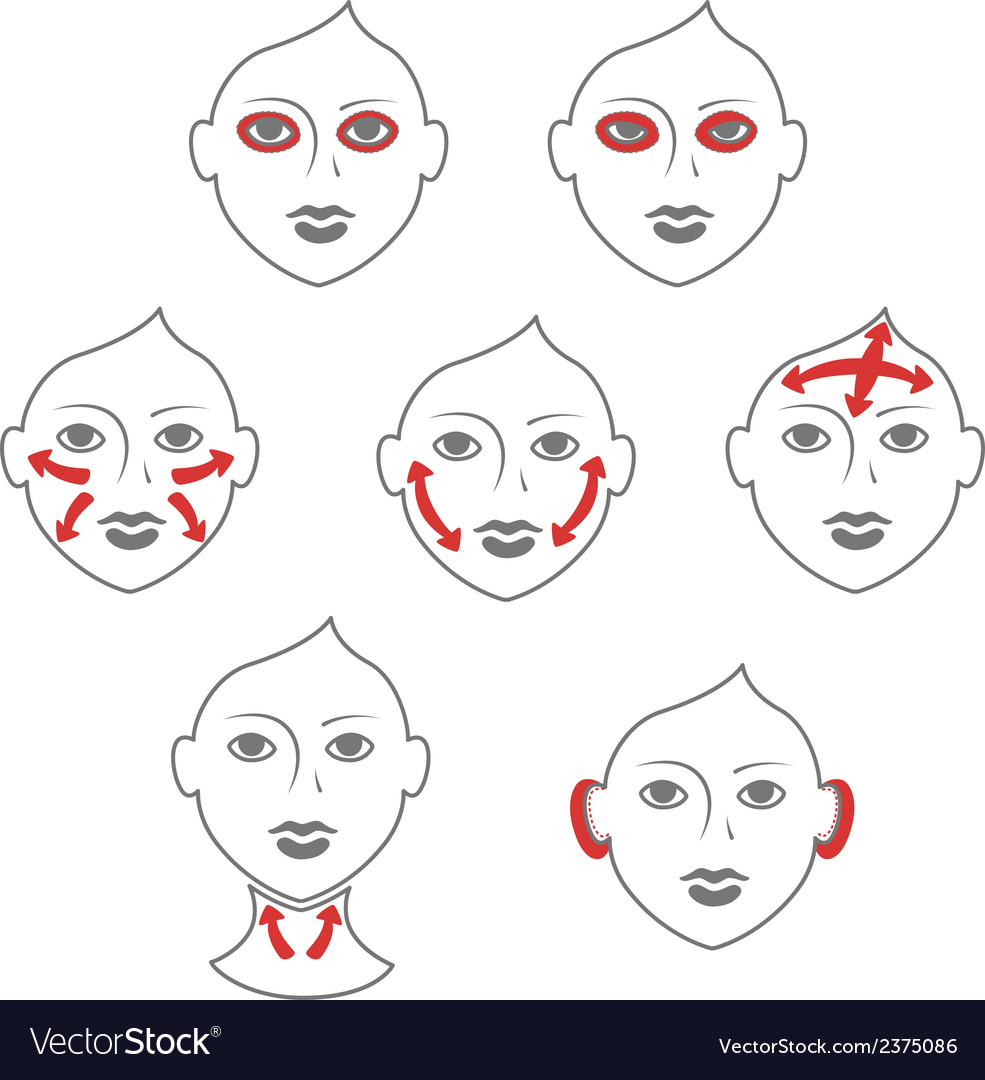 Face and neck plastic surgery vector | Price: 1 Credit (USD $1)