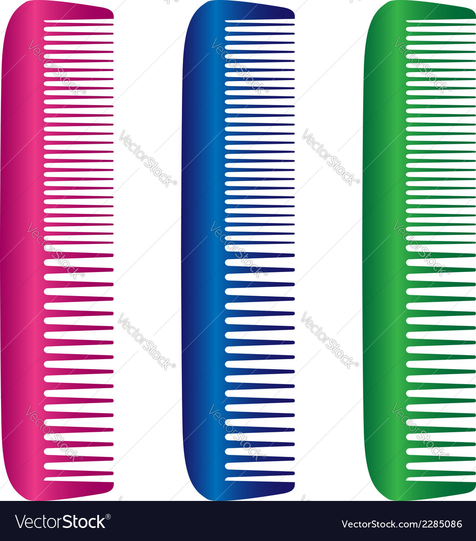 Hairbrushes vector | Price: 1 Credit (USD $1)