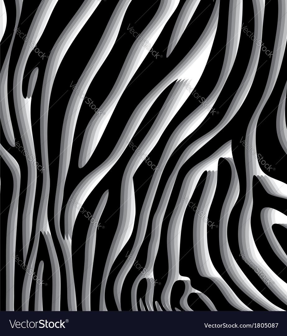 Skin texture of zebra vector | Price: 1 Credit (USD $1)