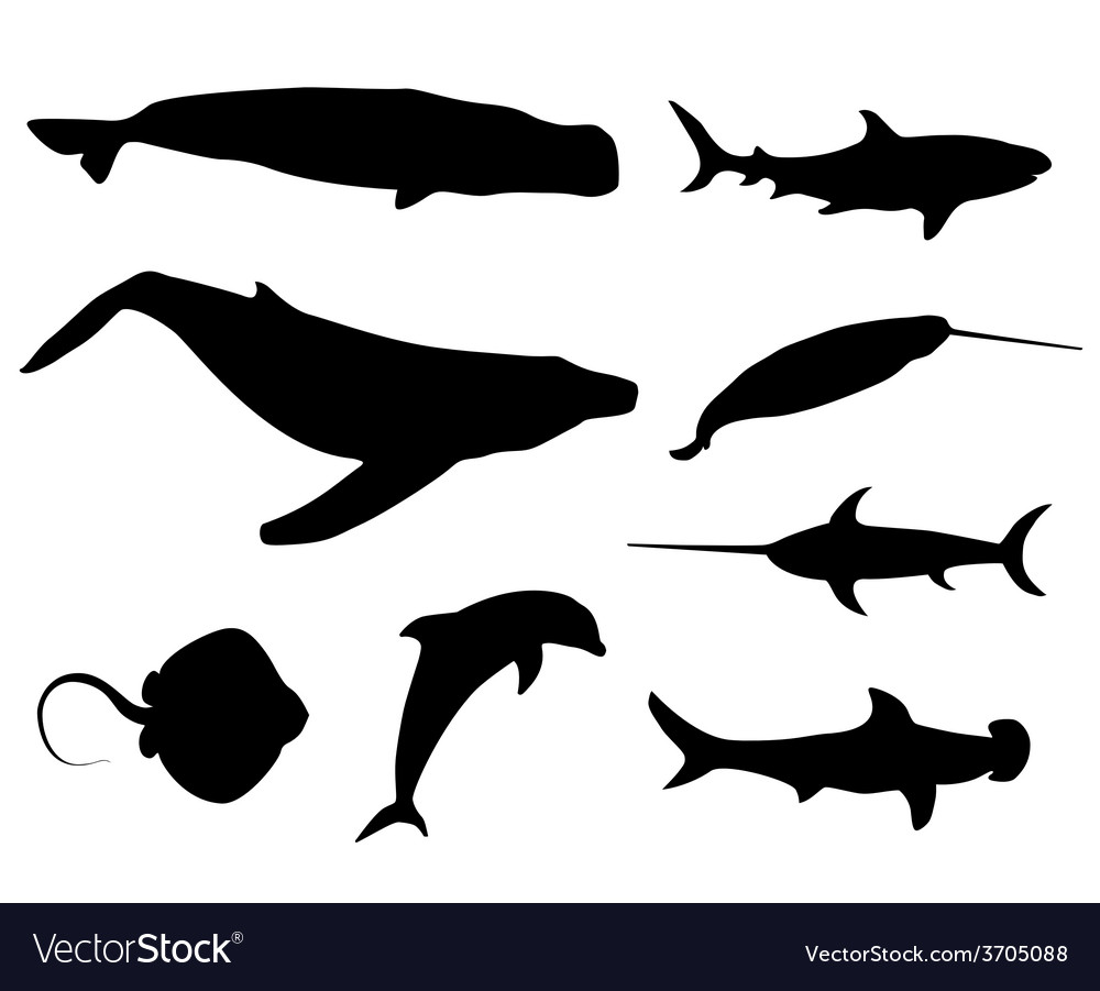 Set of sea life silhouettes vector | Price: 1 Credit (USD $1)