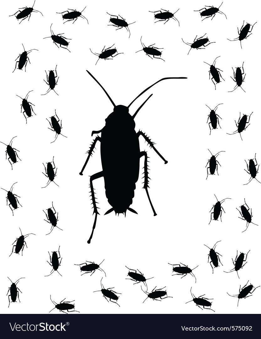 Cockroach brush vector | Price: 1 Credit (USD $1)