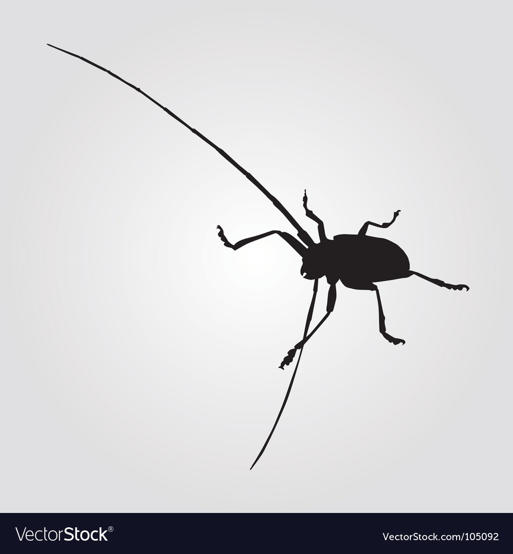 Long horned beetle illustration vector | Price: 1 Credit (USD $1)