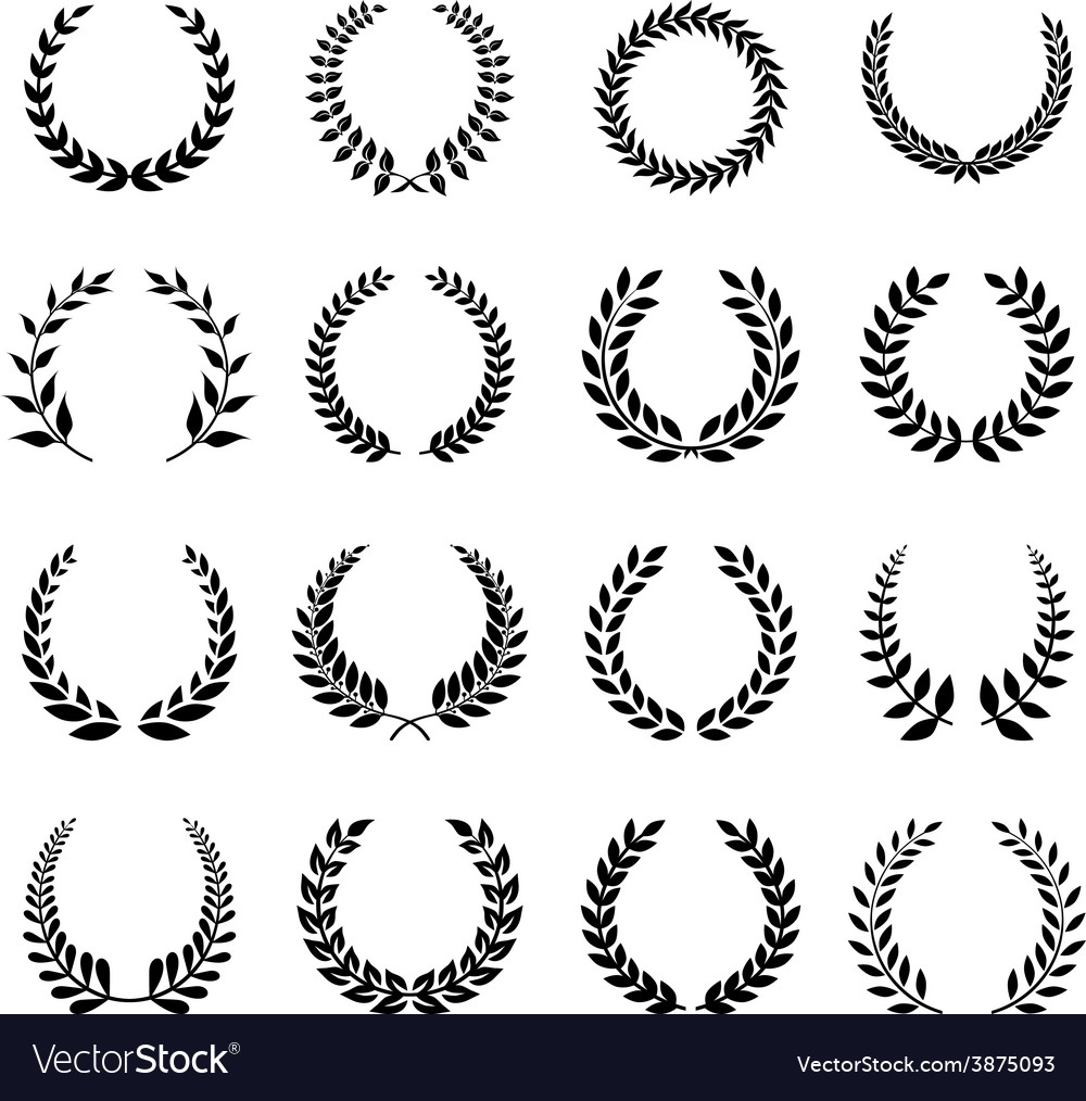 Laurel wreath vector