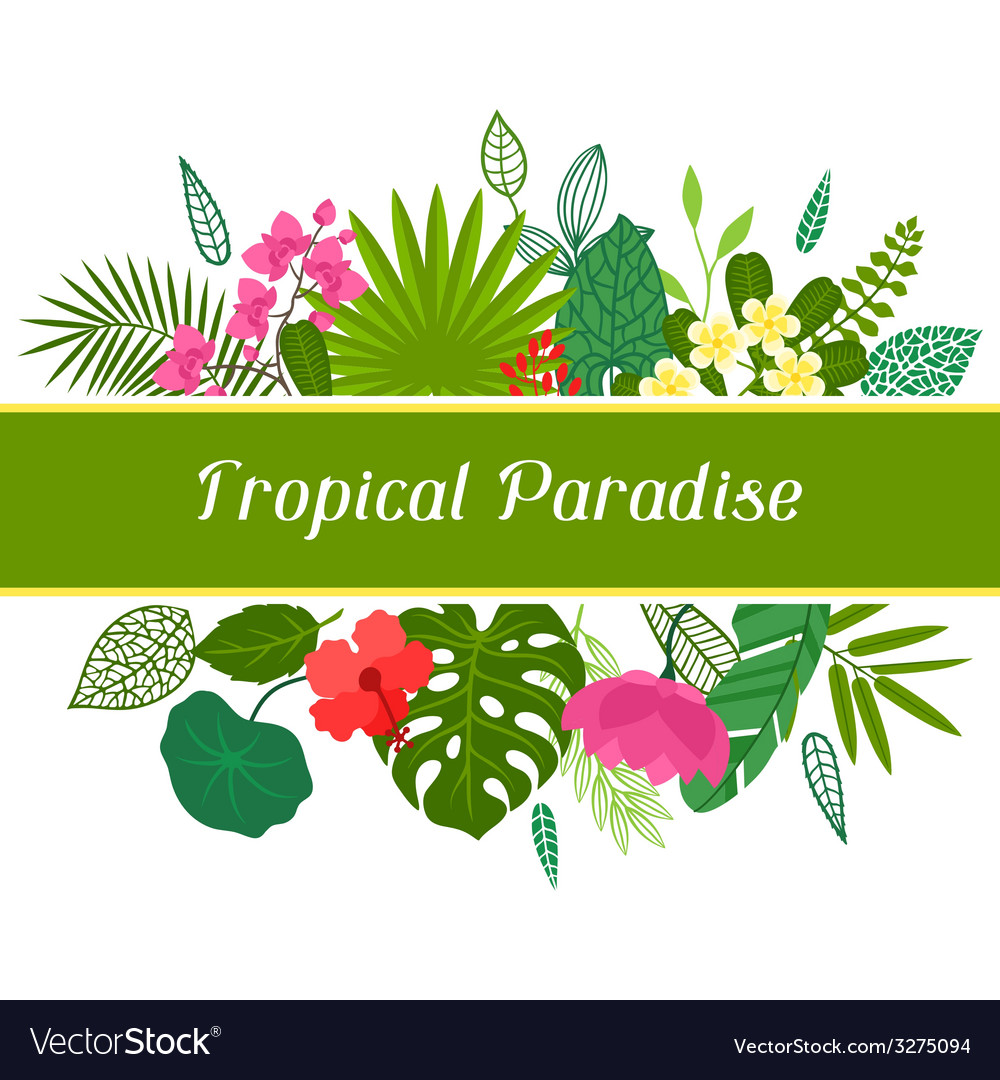 Tropical paradise card with stylized leaves and vector   Price: 1 Credit (USD $1)
