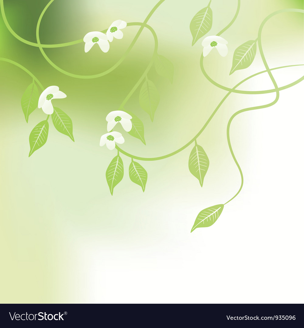 Leaves spring - background vector | Price: 1 Credit (USD $1)