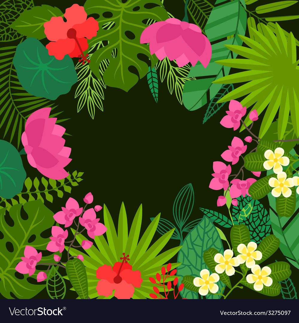 Background of stylized tropical plants leaves and vector | Price: 1 Credit (USD $1)