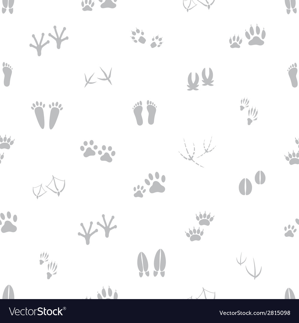 Basic animal footprints gray and white seamless vector | Price: 1 Credit (USD $1)