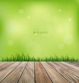 Fresh spring grass background vector