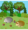 Family of hedgehogs walk on a forest glade vector