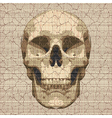 Cracked canvas skull vector