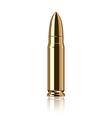 Object bullet vector