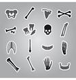Human bones stickers set eps10 vector