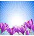 Flowers in spring vector