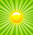 Bright sunburst vector