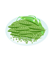 Delicious sweet green pea in white plate vector