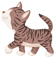 Cute cat cartoon walking vector