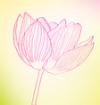 Pink abstract flower vector