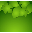 Green spring paper leaves background vector