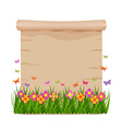 Concept grass and butterflies of spring with blank vector