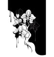 Monochrome orchid vector