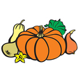 Pumpkin color vector