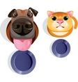 Cat dog food bowls vector