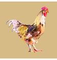 Watercolor painting of bird cock vector