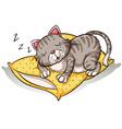 Cat sleeping above the pillow vector