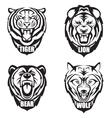 Heads of wild animals vector