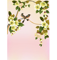 Sakura bird postcard menu vector