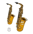 Shining brass saxophone cartoon character vector