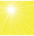 Bright sun rays vector