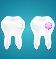 Diamonds in human teeth vector