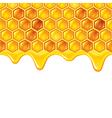 Honeycombs background vector