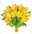 Bouquet of yellow tulips vector