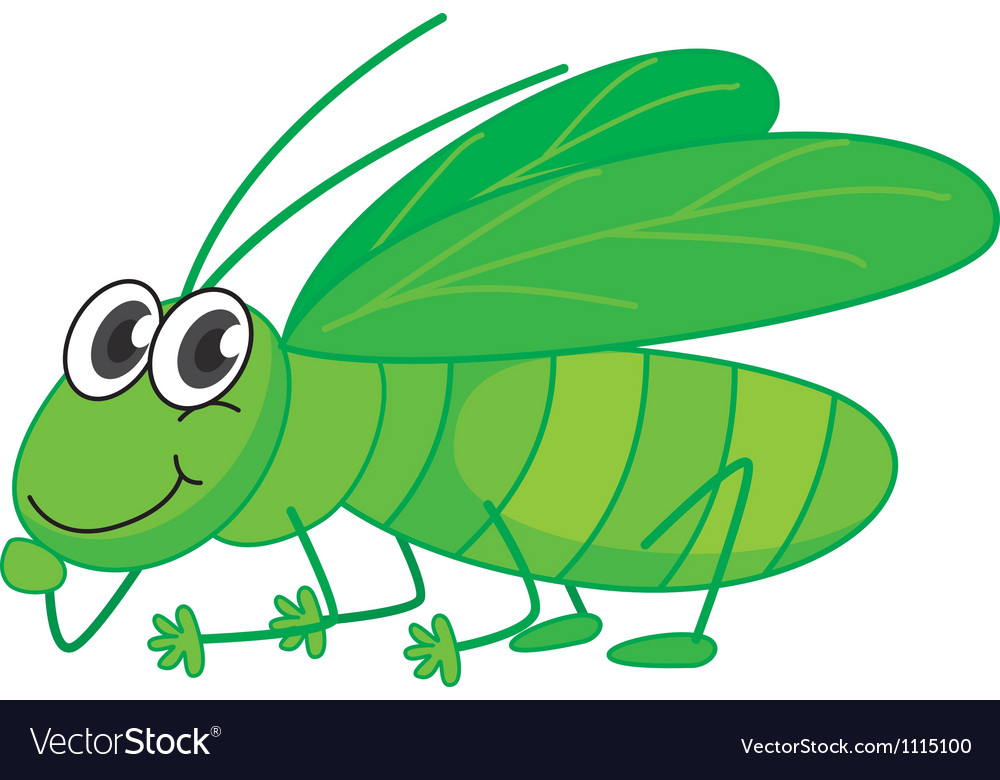 A smiling grasshopper vector | Price: 1 Credit (USD $1)