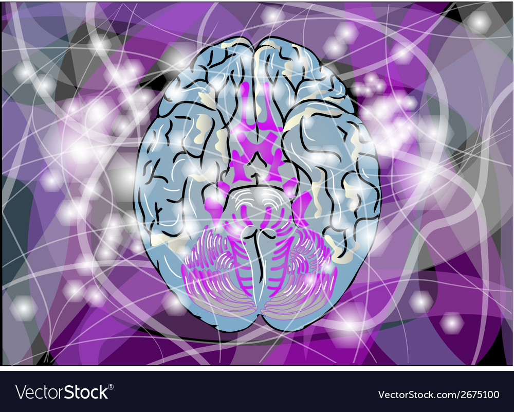 Brain activity vector | Price: 1 Credit (USD $1)
