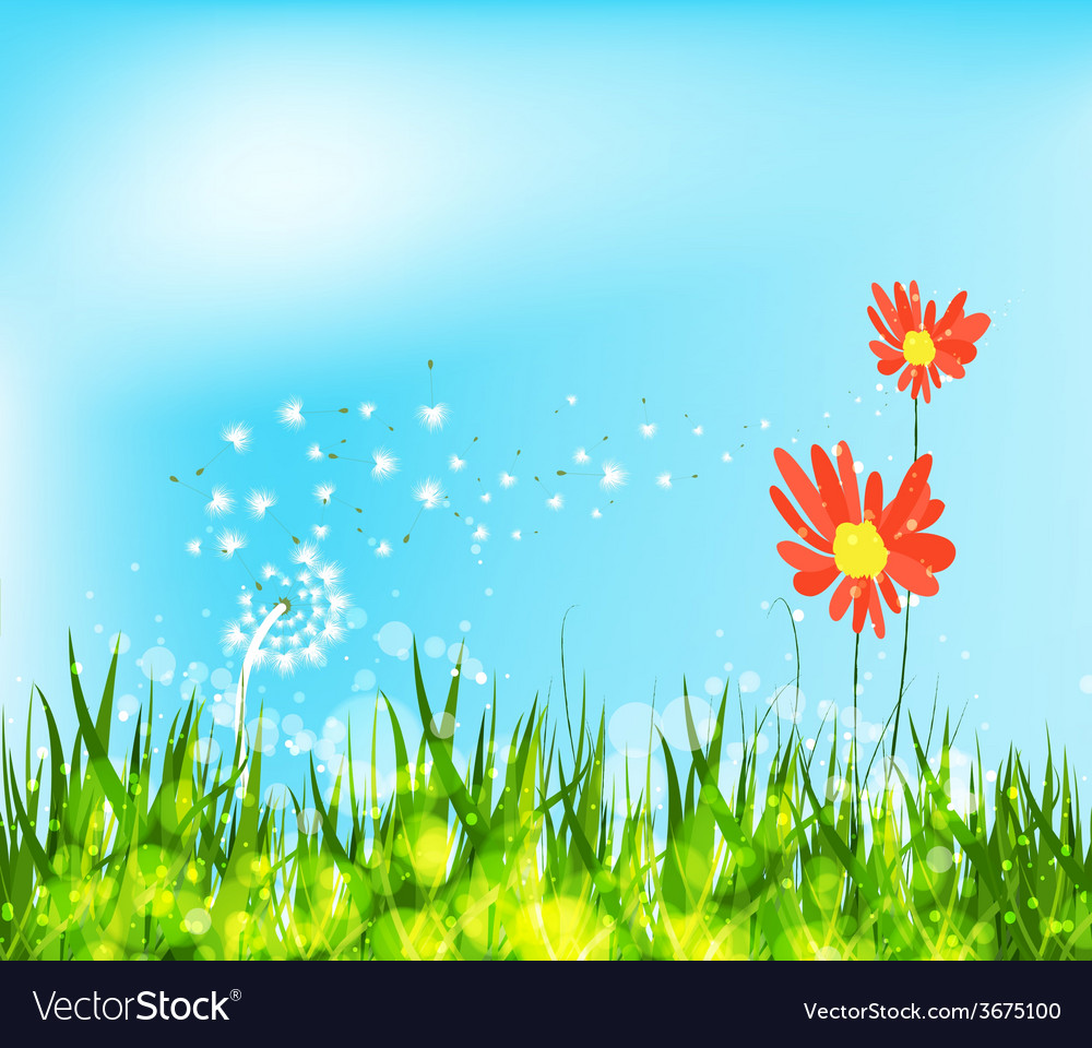 Spring is coming with sunflowers and dandelion vector | Price: 1 Credit (USD $1)