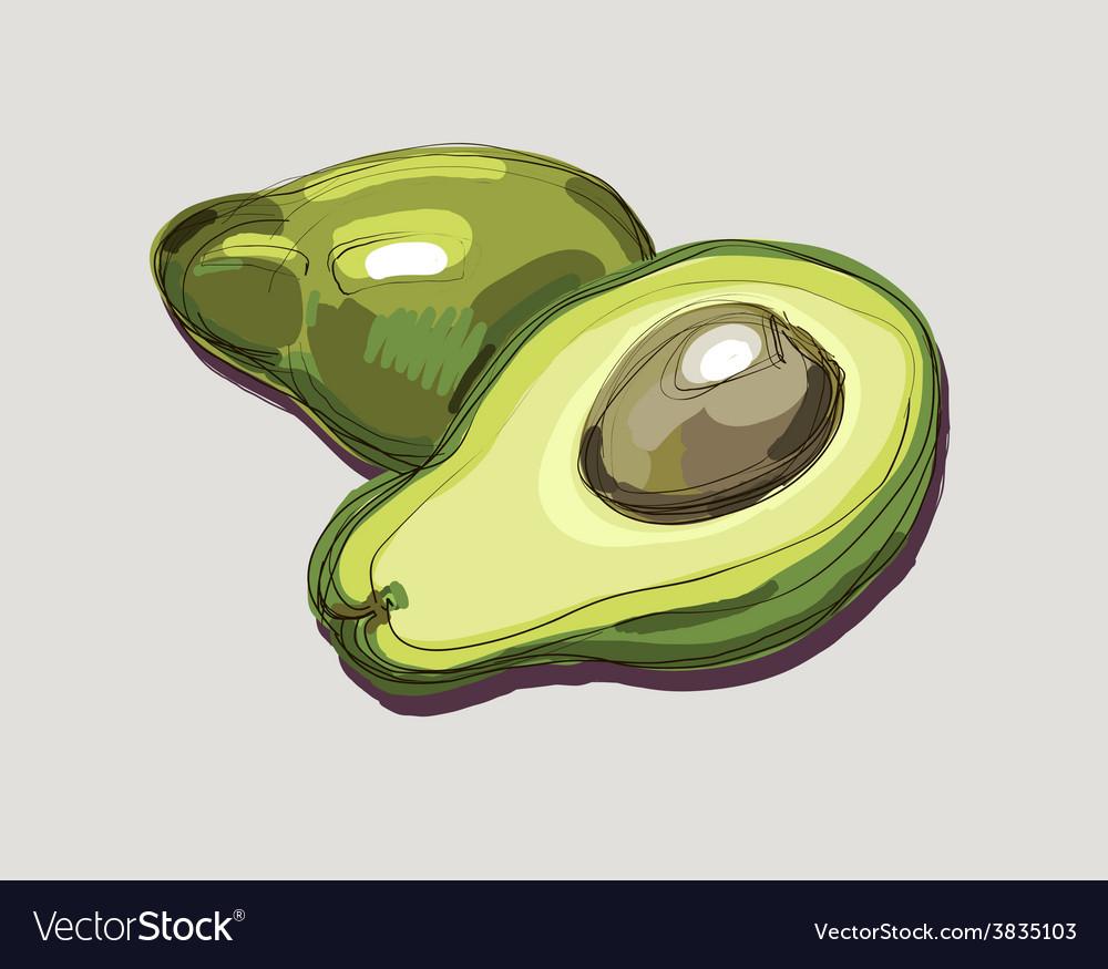 Fresh avocado vector | Price: 1 Credit (USD $1)