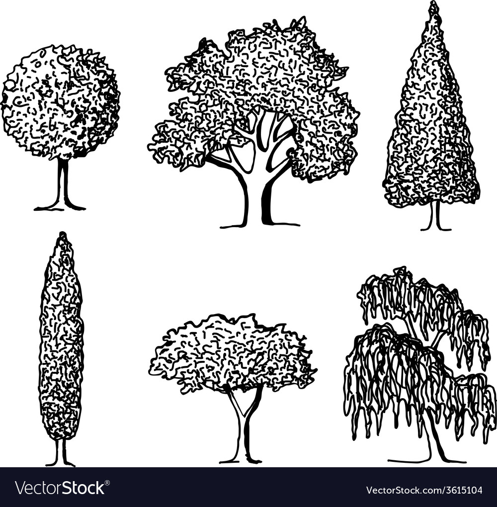 Set of trees in silhouettes vector | Price: 1 Credit (USD $1)