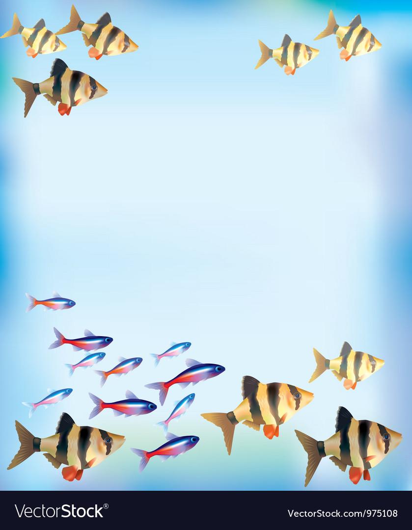Aquarium background vector   Price: 1 Credit (USD $1)