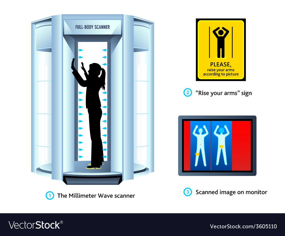 Airport body scanner vector | Price: 1 Credit (USD $1)