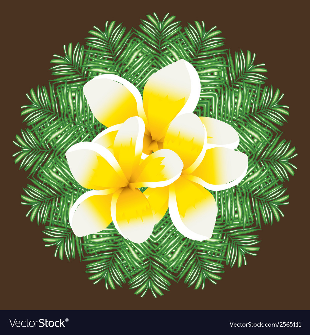 Plumeria seamless pattern palm leaves background vector | Price: 1 Credit (USD $1)